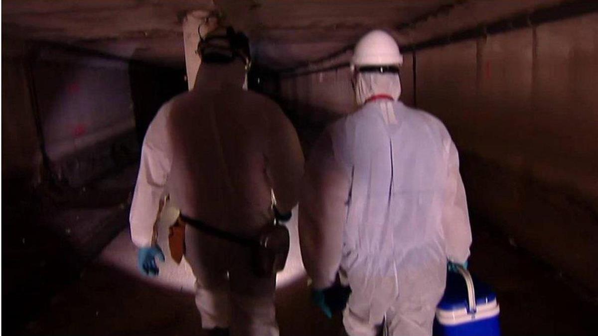 肺炎疫情:西班牙靠地下水預測會否爆發疫情