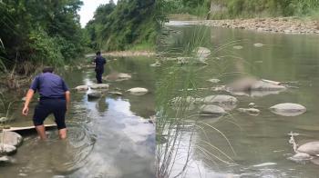託夢大姊在水中!27歲嘉義男失蹤9天 河床找到屍體