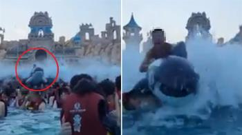 水上樂園消暑!男等海嘯慘遭「海豚」擊落 2萬人笑翻