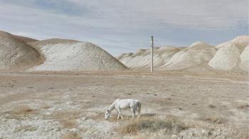 美照全從Google街景截圖 藝術家「作品」網友大讚療癒