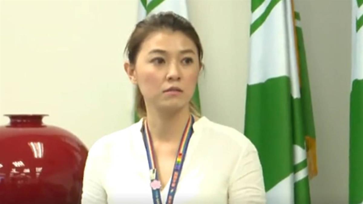 民進黨:國民黨稱沒收公投  是無端指控