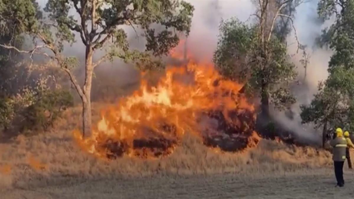 加州野火快速延燒 數千居民被迫逃離家園