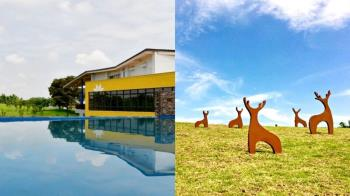 媲美森林遊樂園!台南官田遊客中心完工 小鹿、白鶴地景超療癒