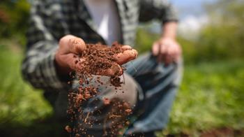 大陸不明土壤包裹案 關務署:積極調查中