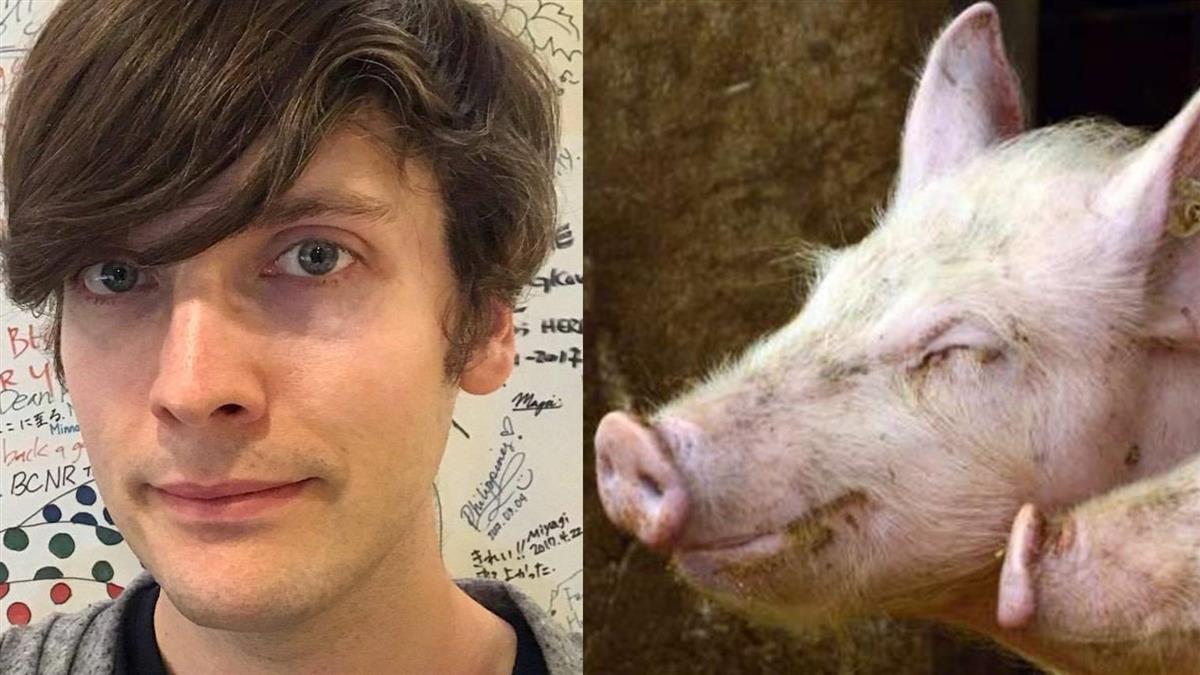 台開放瘦肉精美豬!在台美國人爆:我不敢吃…親曝原因
