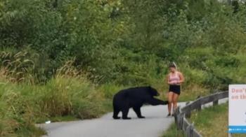 辣女穿短褲步道慢跑 黑熊衝出摸腿恐遭安樂死