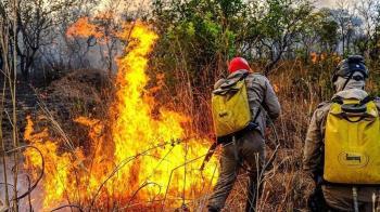 巴西中西部2萬多處大火 燒毀美洲虎棲息地