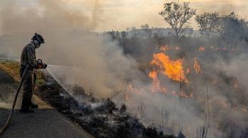 氣候異常+人為破壞!巴西乾燥高溫 森林大火降黑雨