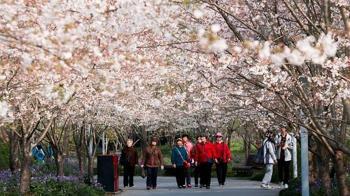 中國疫情改善 美國務院解除最高旅行警示