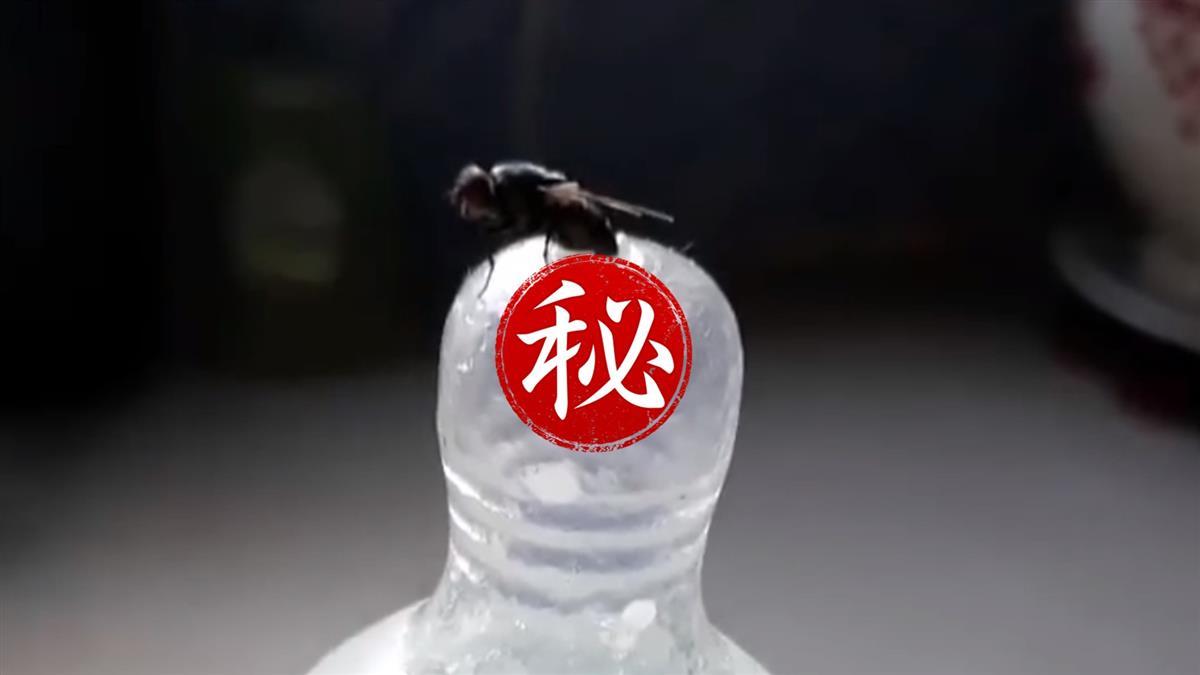 媽媽嚇呆!奶瓶沒加蓋...蒼蠅停洞口產卵狂噴蛆