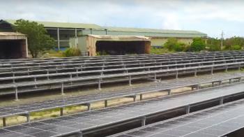 荒廢農地再生!力暘能源來幫忙