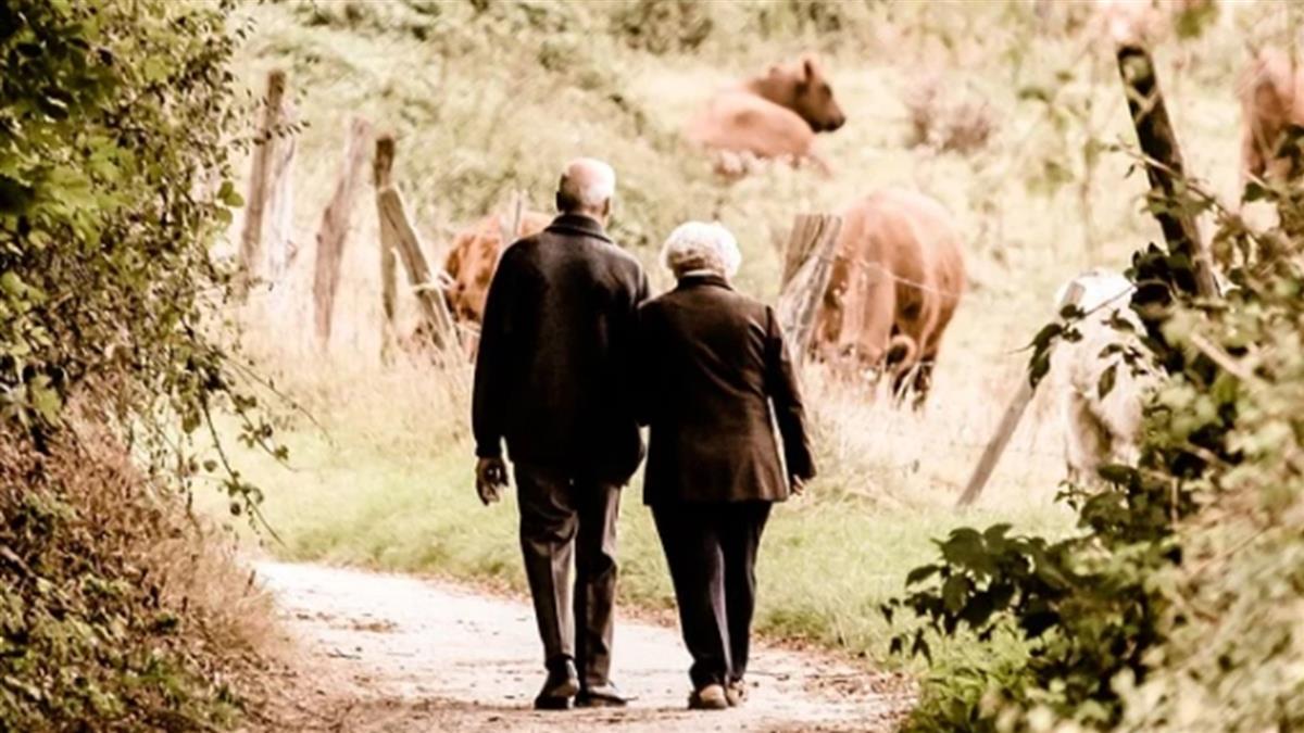 見一面少一面!96歲妹淚崩追車 塞錢給101歲哥:去買好吃的