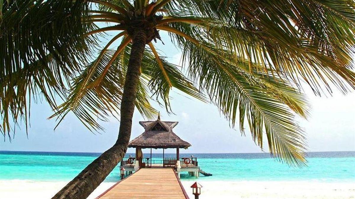 「重視兩國情誼」若開放旅遊泡泡 帛琉:台灣優先
