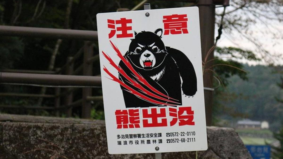 日本新潟發生熊殺人 首度發布「熊出沒」警報
