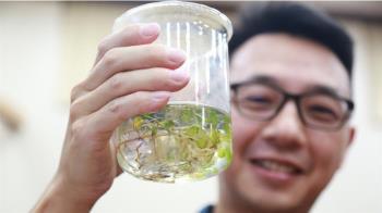 台斯合作保育海草藍碳  中山大發現全球首例