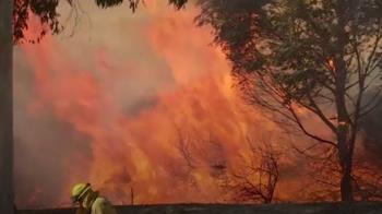 乾燥強風助長!加州野火爆發 緊急撤離10萬人