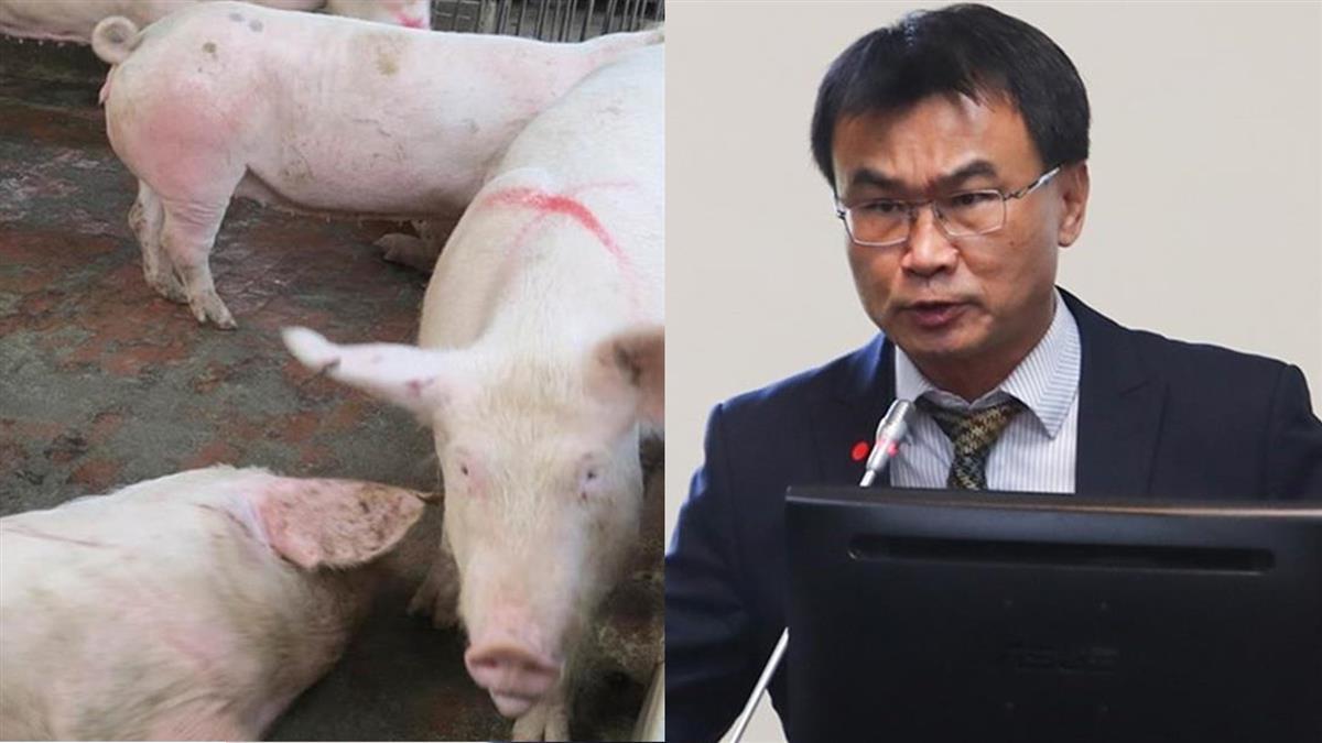 全球萊豬都可進口? 陳吉仲:只會是美豬