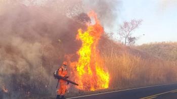 巴西大沼澤10月火災 創1998年監測以來新高
