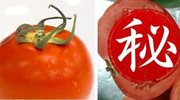 密集恐懼症發作! 番茄切開竟「發芽」 醫:無毒