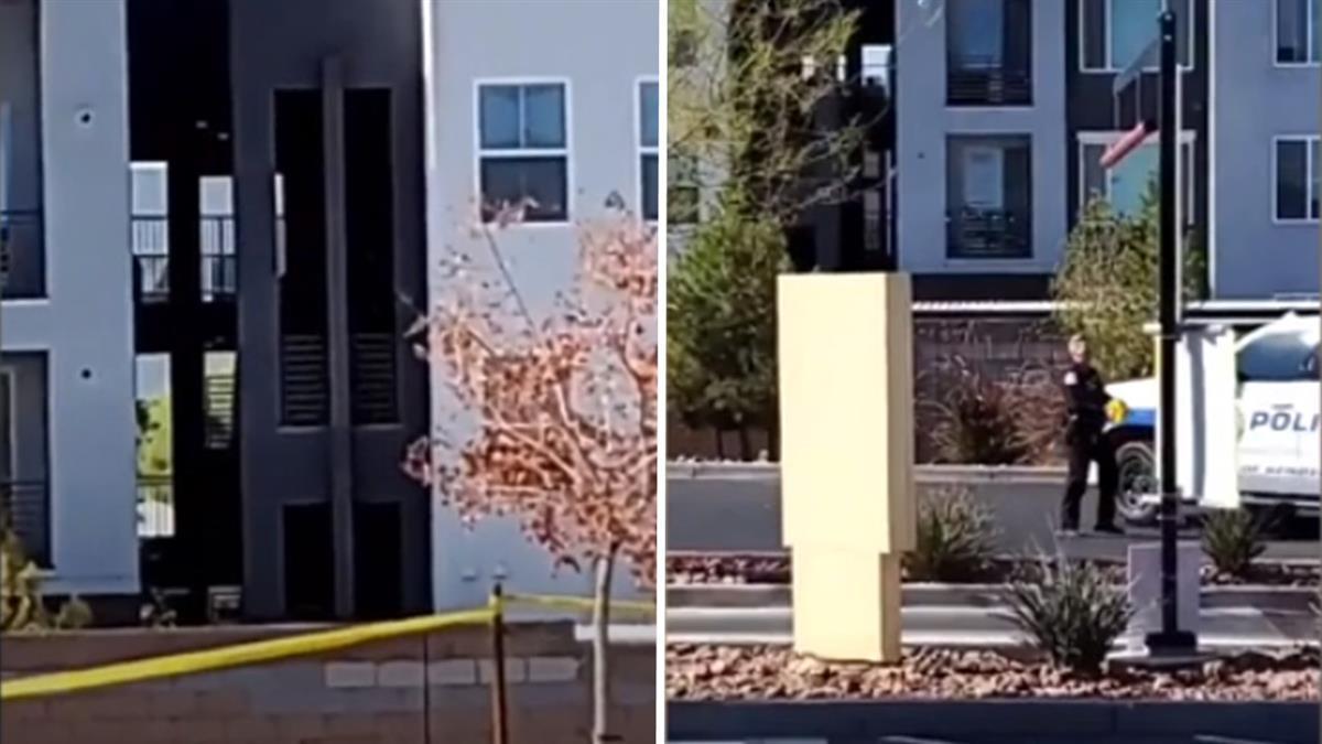 搖擺州爆槍擊!開票日內華達州駁火釀4死 居民嚇壞