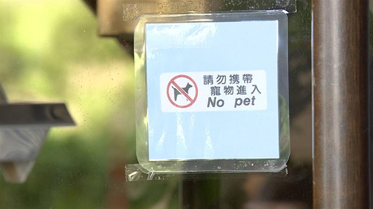 獨/狗藏嬰兒車到禁寵物餐廳 吃完還留「一星」負評