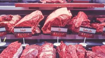 含萊克多巴胺的肉品如何標示  鄧振中釋疑