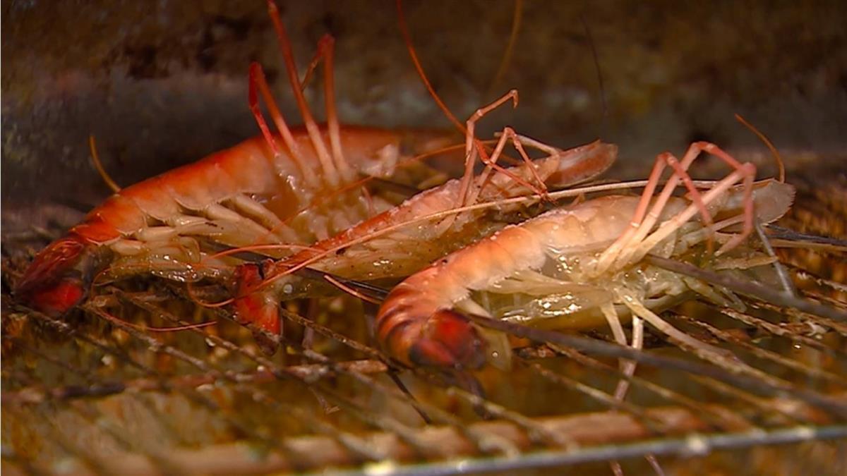 嫌吃到飽泰國蝦髒不敢吃!餐廳、釣蝦場揭新鮮關鍵