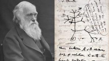 達爾文物種起源手稿 劍橋大學圖書館:可能遭竊