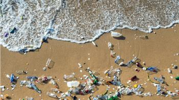 微塑膠毒害海洋生物後代 中研院發現死亡率增3倍