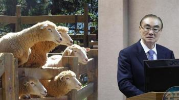 馮世寬批終止清境綿羊秀「荒謬」!動保:動物福利與舊時代不同