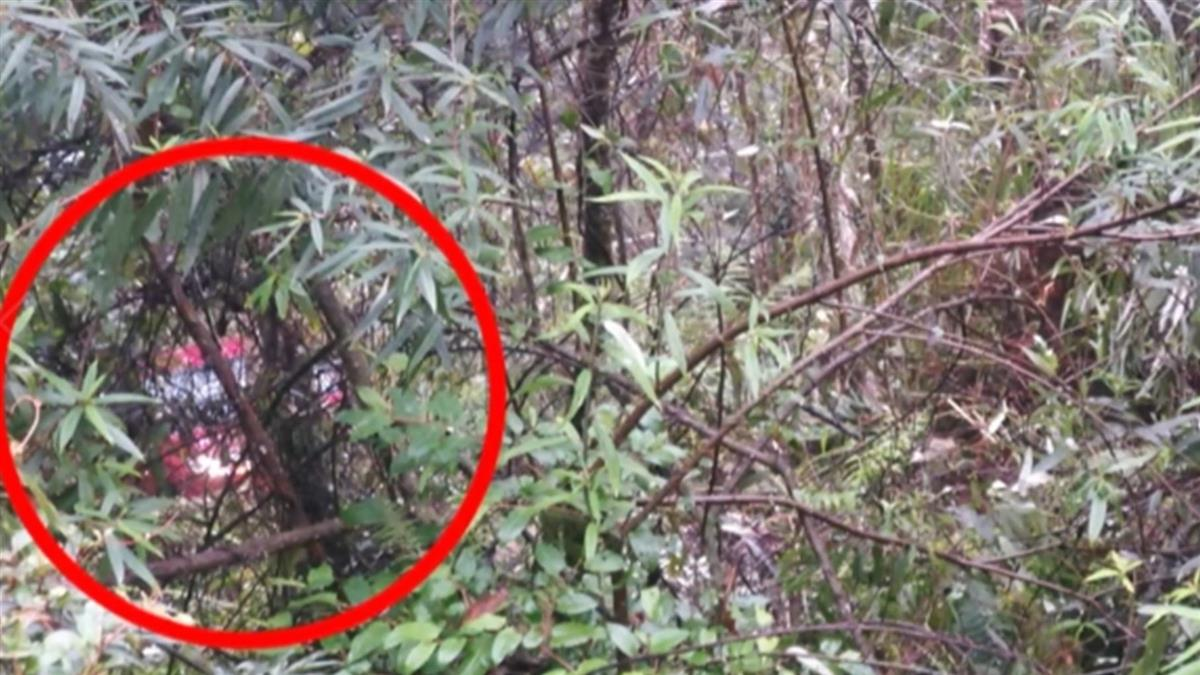 花蓮轎車墜中橫邊坡!卡離地40公尺樹林 警消救援