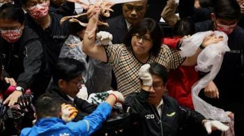 台灣立法院「豬內臟」混戰中的「女戰神」王美惠
