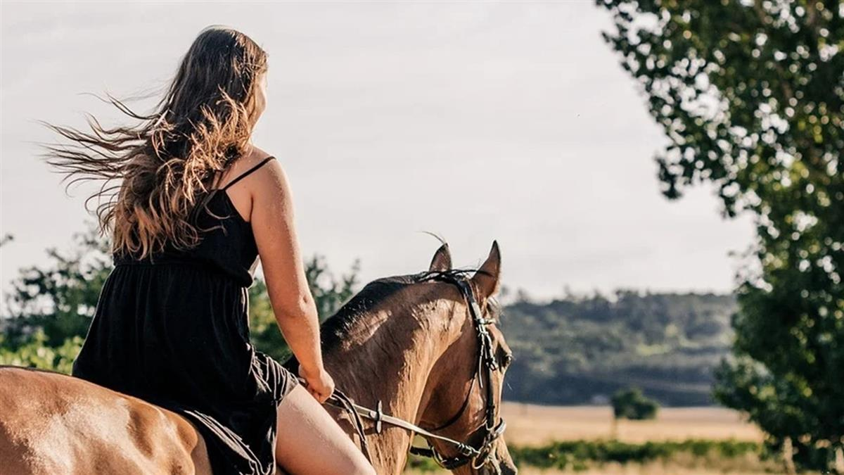 正妹騎馬太驚豔!醉男搭訕「猥褻馬匹」 下秒鼻子竟被咬斷