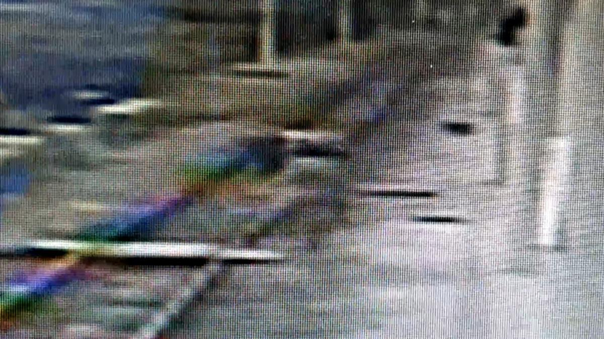 最美「稻浪車站」傳落軌意外 90歲翁重心不穩摔傷