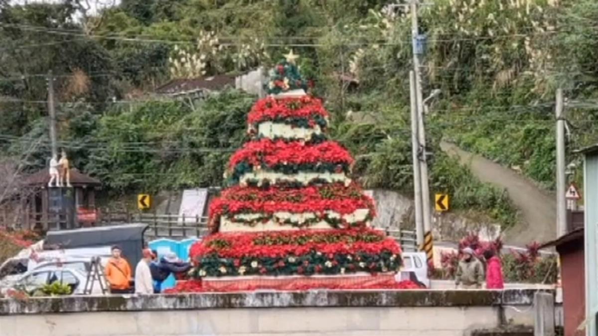 紅花節「金字塔耶誕樹」像罐頭塔 協會:還沒布置完成