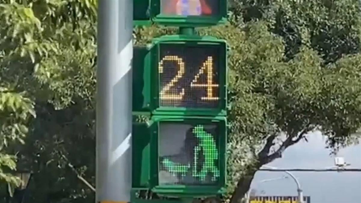 小綠人新造型!「老人遛狗」放大版燈面增加安全性
