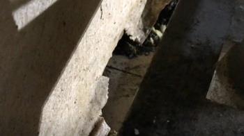 遭控「挖洞」偷排廢油髒污到隔壁民宅 牛排館否認
