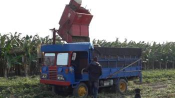 小農合作打團體戰 產業升級好事「花生」