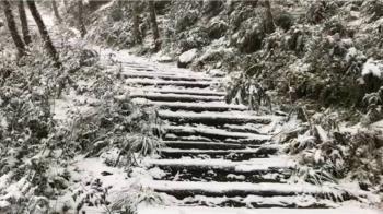 低溫+水氣足 棲蘭神木園、明池、拉拉山多處降雪