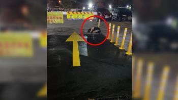 熱褲妹跪趴停車場入口 駕駛一看傻眼:怎麼進去