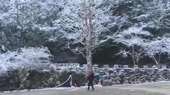 拉拉山降雪停歇 民眾趁積雪未融化上山看雪