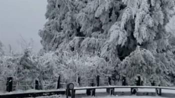 太平山積雪未退!遊客上山賞雪 車龍回堵6公里