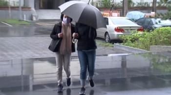 昔「最美女董」葉素菲掏空公司、侵4.8億 關11年出獄