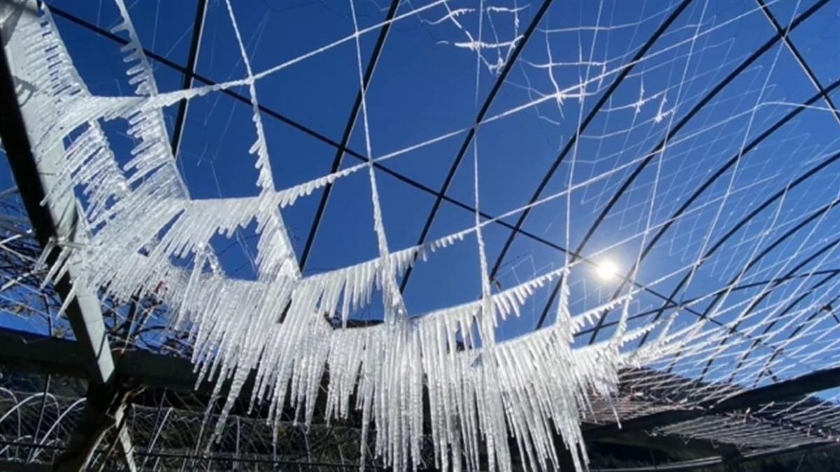 寒流+輻射冷卻影響 苗栗頭屋清晨1.5度 白天全台回暖