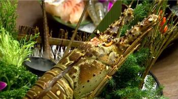 中澳貿易戰!澳洲龍蝦價砍半 台灣受惠
