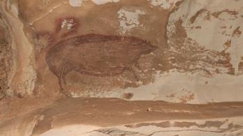 印尼發現4萬年前野豬畫 盤點十件史前洞穴藝術品