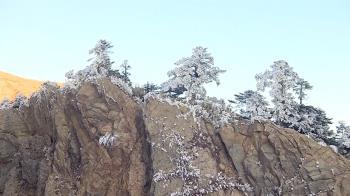 冷氣團減弱合歡山陽光露臉 遊客看日出拍霧淞