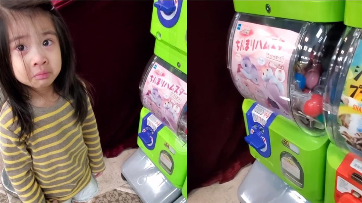 2歲女兒扭蛋轉到倉鼠哭了 他聽背後原因超欣慰