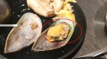 獨/淡菜殼、肉皆有藍綠色物質?海鮮批發:正常免驚