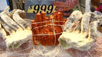 熟凍?活體?進口國、品種不同 帝王蟹價差大